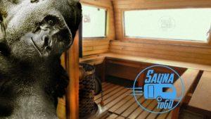 gorillamarketing